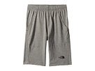The North Face Kids The North Face Kids Reactor Core Shorts (Little Kids/Big Kids)