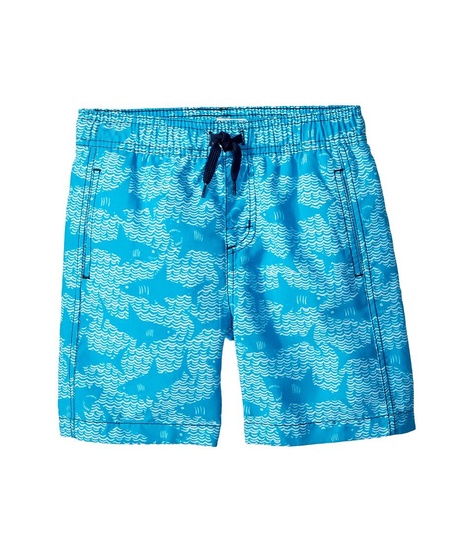 Hatley Kids Shark Alley Swim Trunks (Toddler/Little Kids/Big Kids) (Blue) Boy