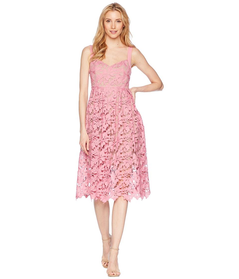 Donna Morgan Lace Midi Dress with Sweetheart Neckline (Pi...