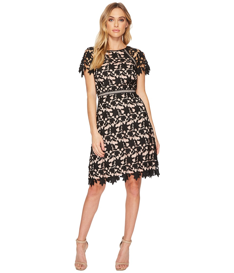 Adrianna Papell Ava Lace Trimmed A-Line Dress (Black/Rose Gold) Women