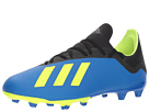 adidas adidas X 18.3 FG World Cup Pack