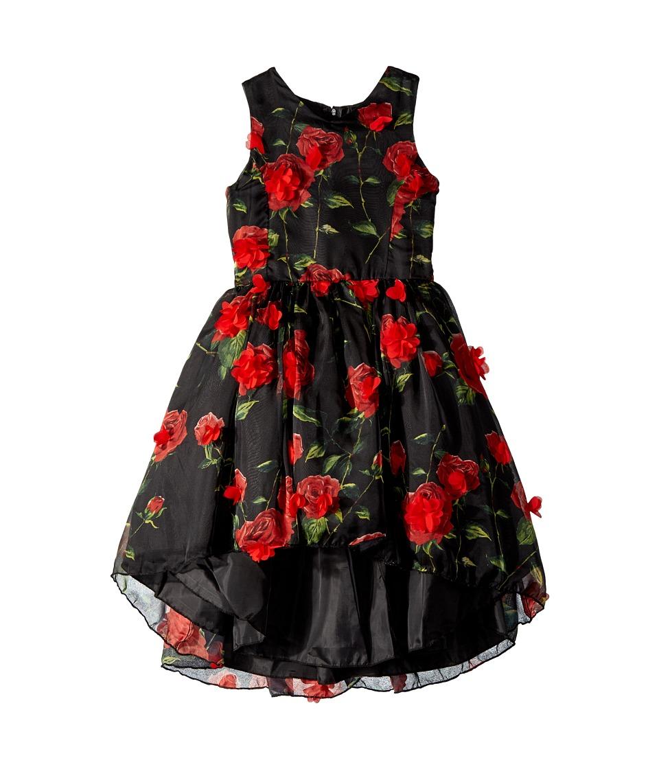 Nanette Lepore Kids - Chiffon Dress With Tack On Flowers (Little Kids/Big Kids) (Multi) Girls Dress