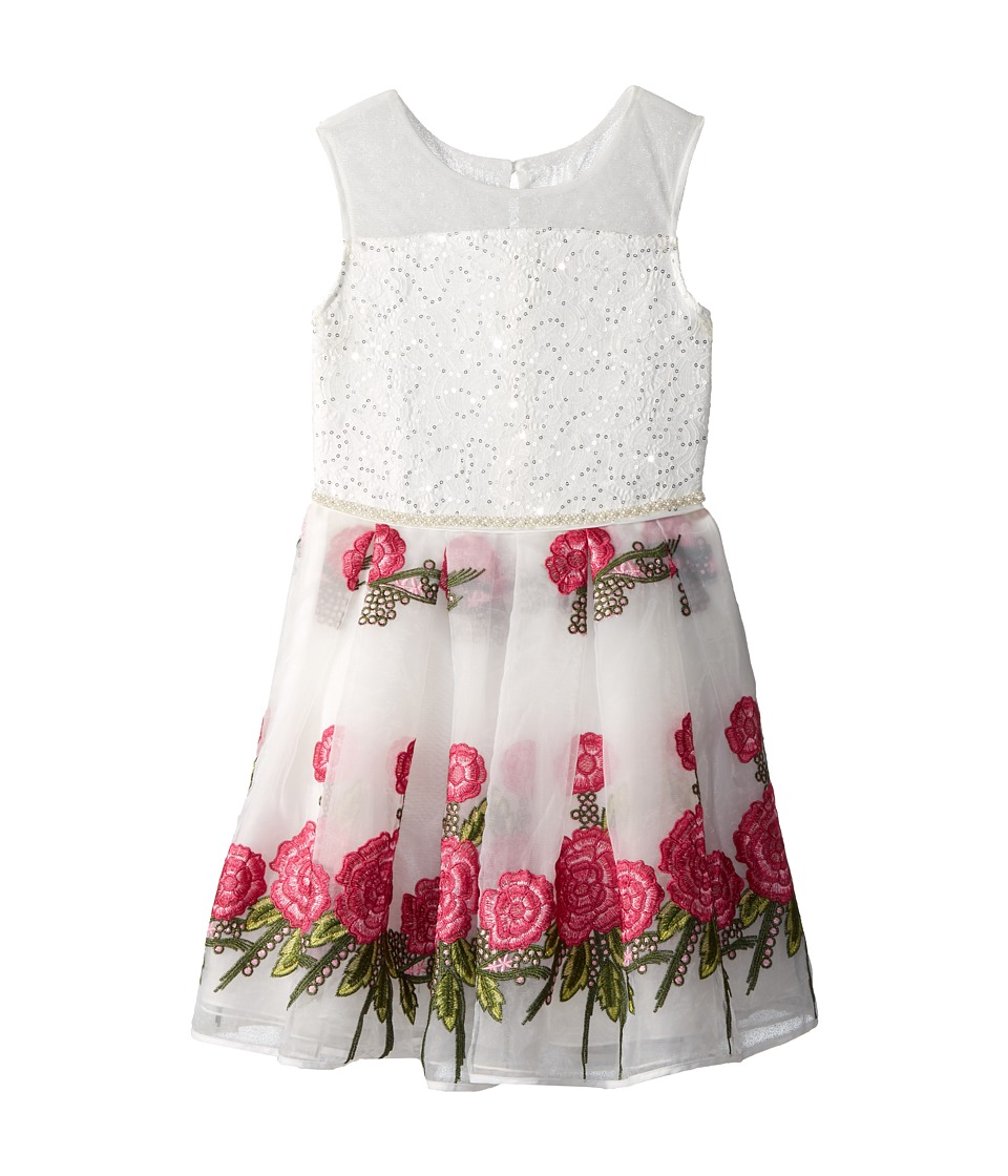 Nanette Lepore Kids - Embroidered Organza Dress (Little Kids/Big Kids) (White) Girls Dress