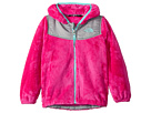 The North Face Kids The North Face Kids Oso Hoodie (Toddler)