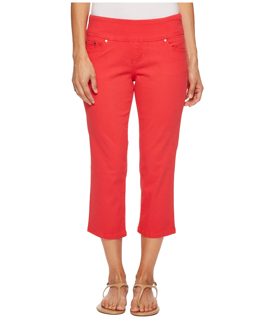 Jag Jeans Petite - Petite Peri Straight Pull-On Twill Crop in Hibiscus (Hibiscus) Womens Jeans