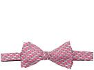 Vineyard Vines School of Shark Printed Bow Tie