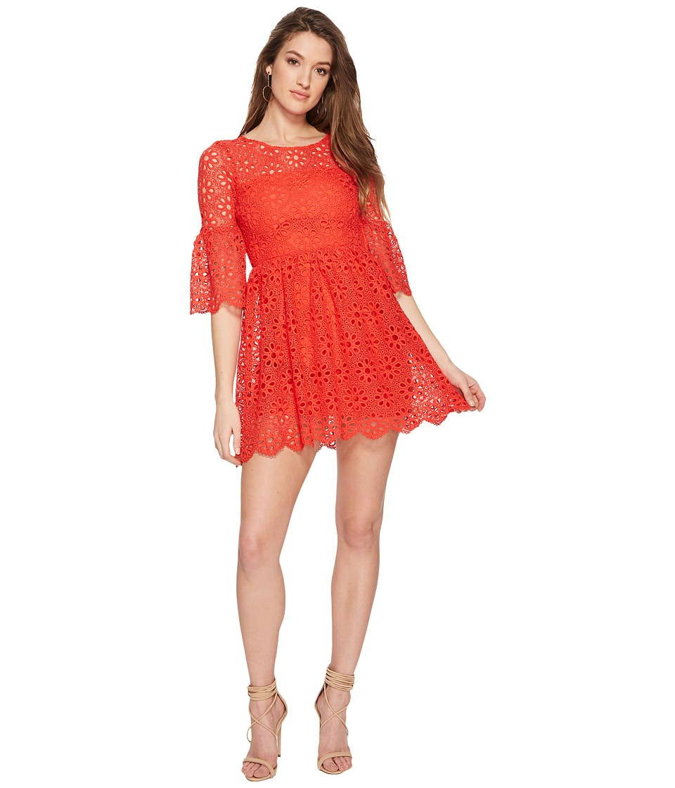 Jack by BB Dakota - Lauper Floral Eyelet Fit and Flare Dress (Poppy Red) Womens Dress