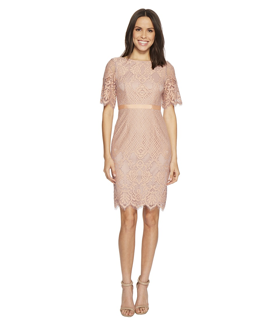 Adrianna Papell - Georgia Scalloped Lace Sheath Dress with Rounded Neckline, Pegged Skirt, and Elbow Length Bell Sleeves, Partially Lined (Peach/Lilac) Womens Dress