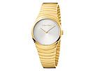 Calvin Klein Calvin Klein Whirl Watch - K8A23546