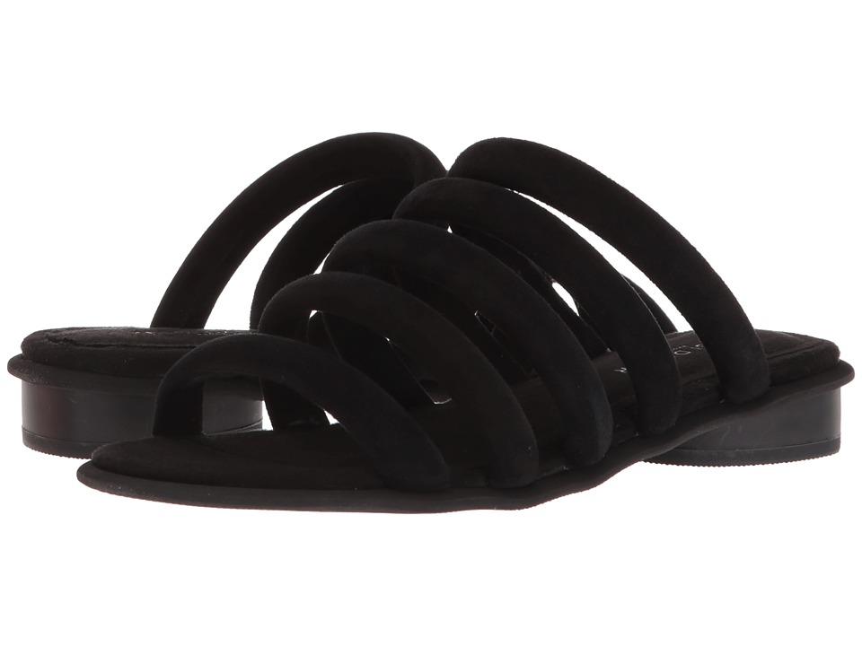 Kelsi Dagger Brooklyn - Saga (Black) Womens Shoes