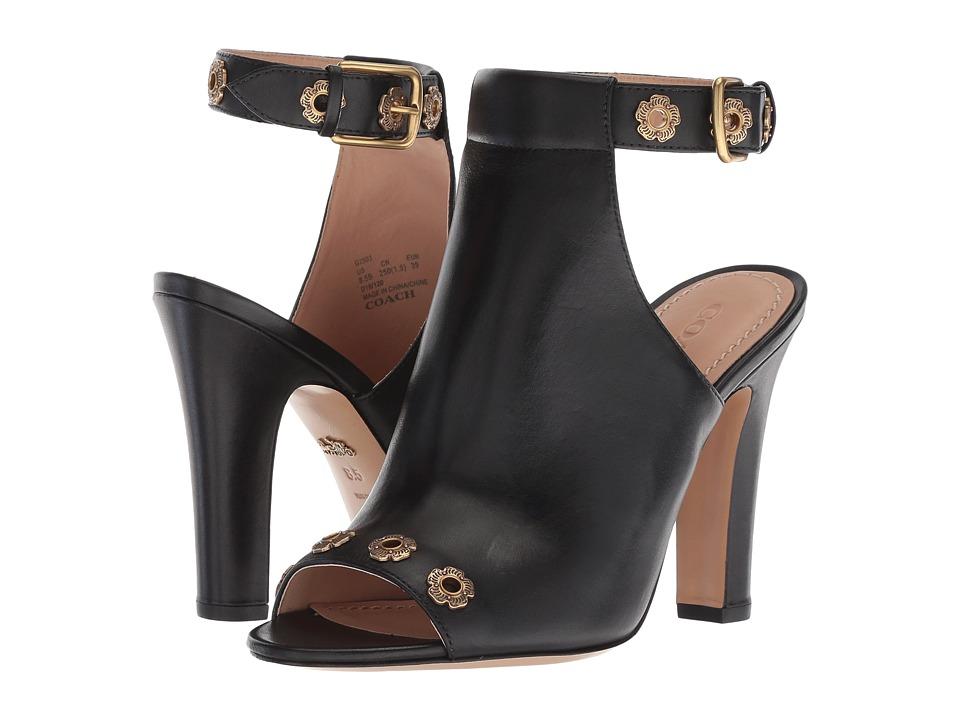 COACH Eddison 102mm Mule (Black Leather) High Heels