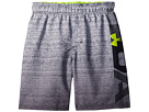 Under Armour Kids UA Dipper Volley Shorts (Big Kids)