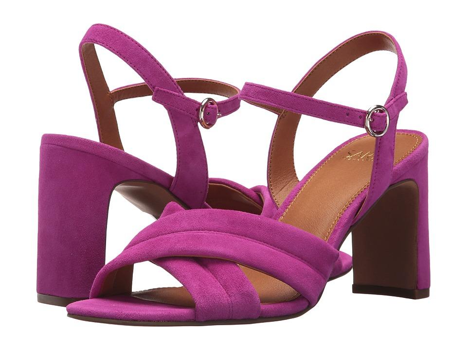 Franco Sarto Kristina by SARTO (Wild Violet) High Heels