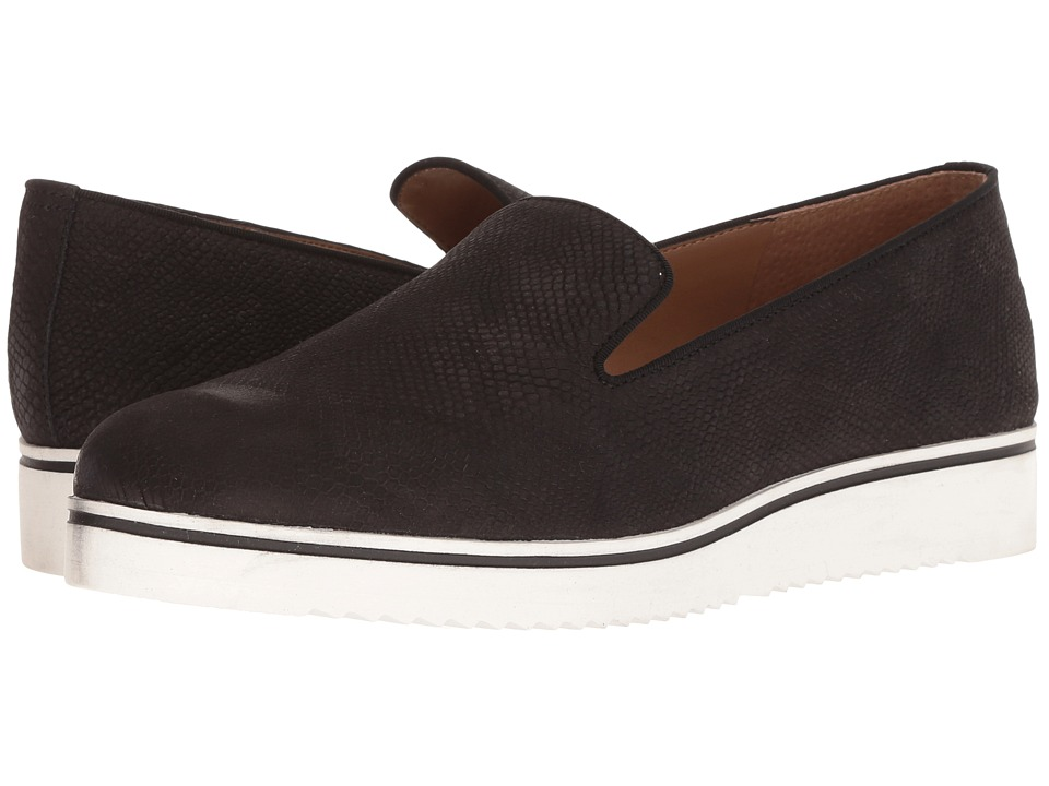Franco Sarto Fabrina (Black) Women's Shoes