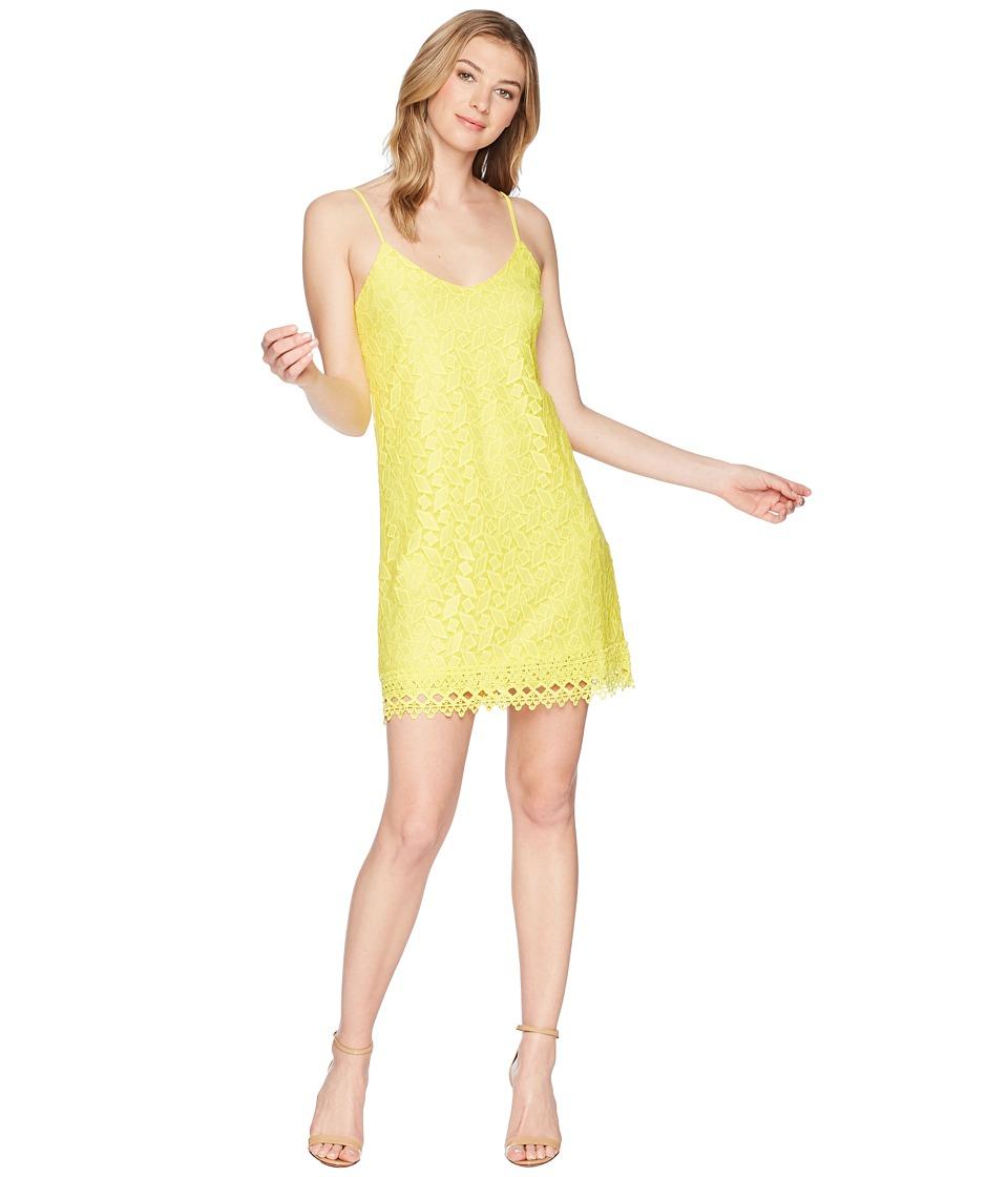 Jack by BB Dakota - Jemma Geometric Lace Slip Dress (Lemon Yellow) Womens Dress