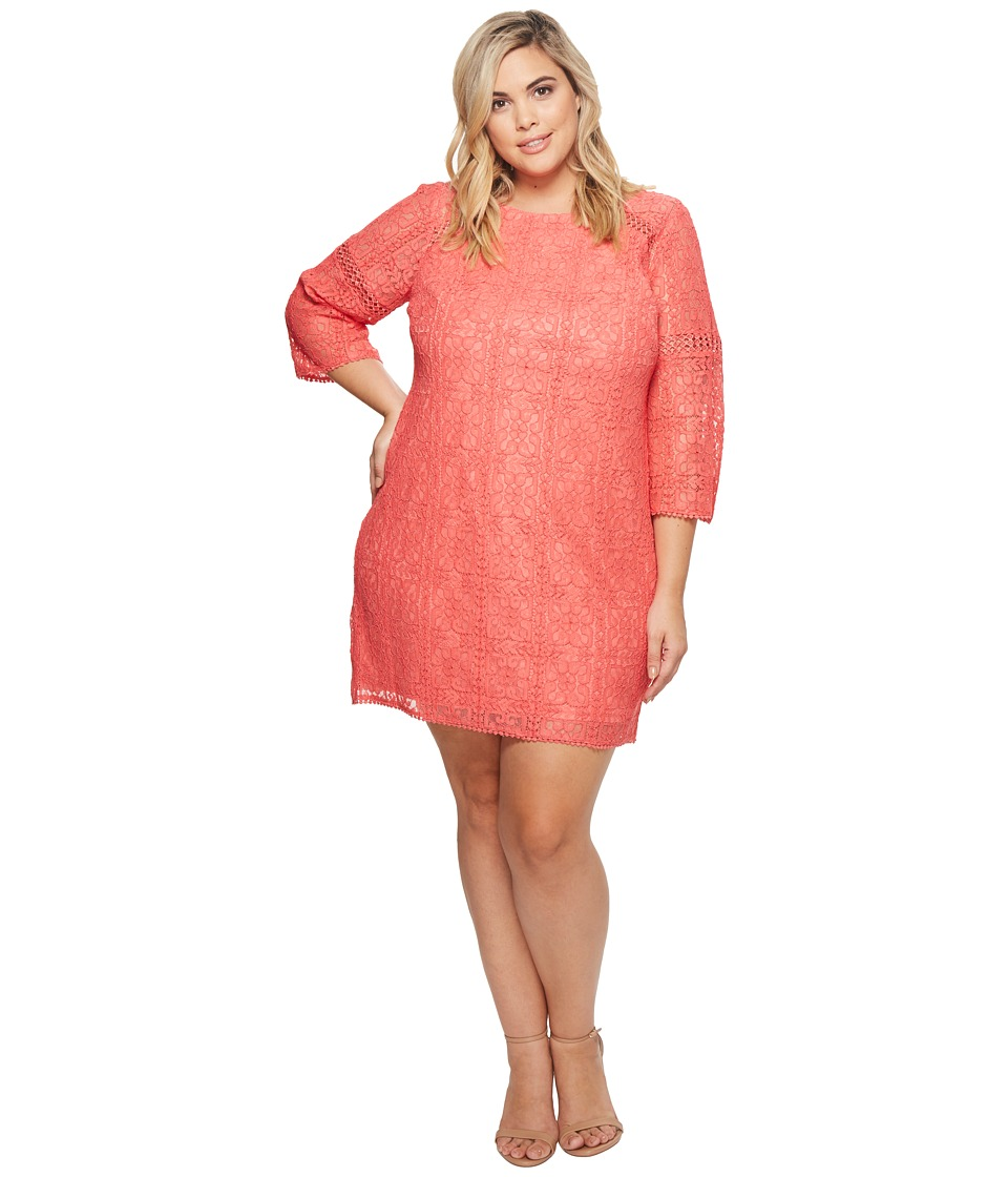 Adrianna Papell - Plus Size Marni Lace 3/4 Sleeve Shift Dress (Cruise Coral) Womens Dress