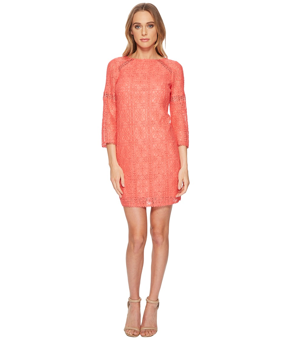 Adrianna Papell - Marni Lace 3/4 Sleeve Shift (Cruise Coral) Womens Dress