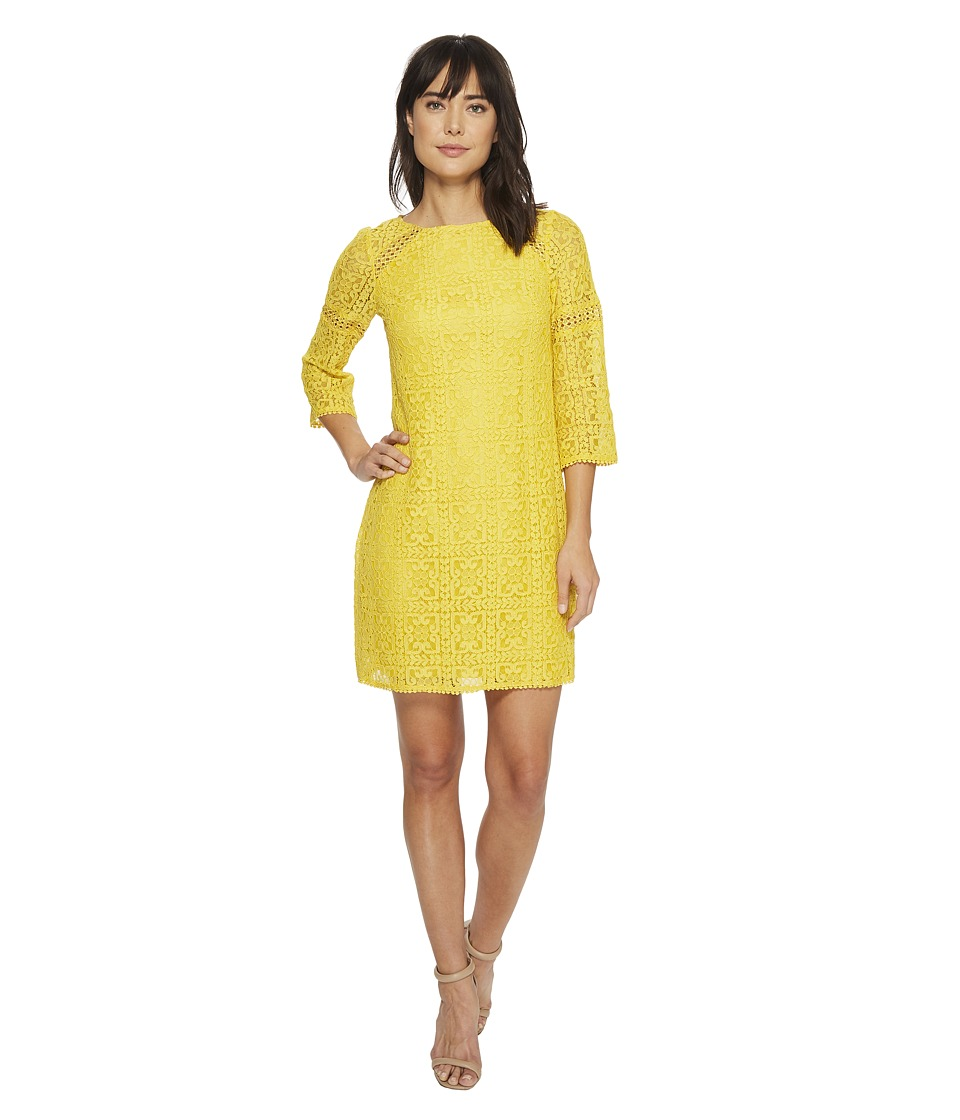 Adrianna Papell - Marni Lace 3/4 Sleeve Shift (Freesia) Womens Dress
