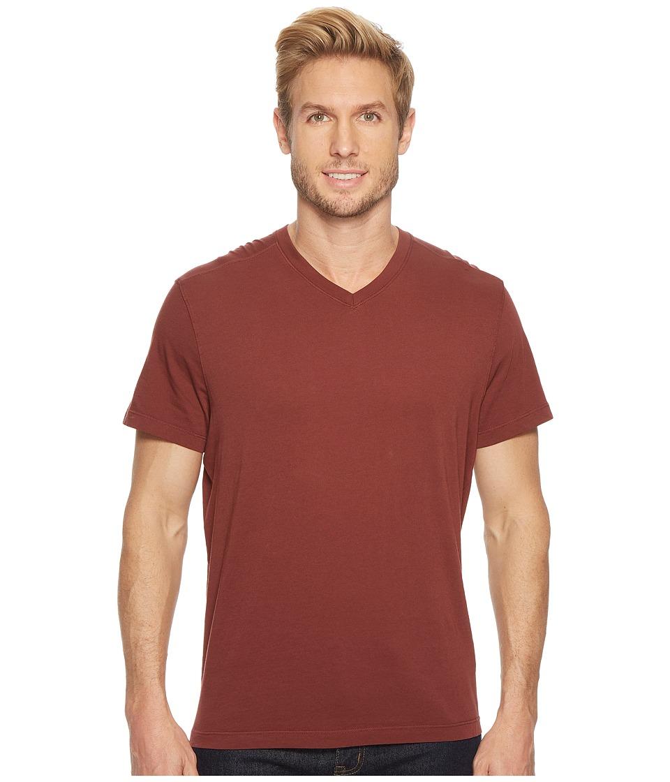 Agave Denim - Agave Supima Vee Neck Short Sleeve Tee (Andorra) Mens T Shirt