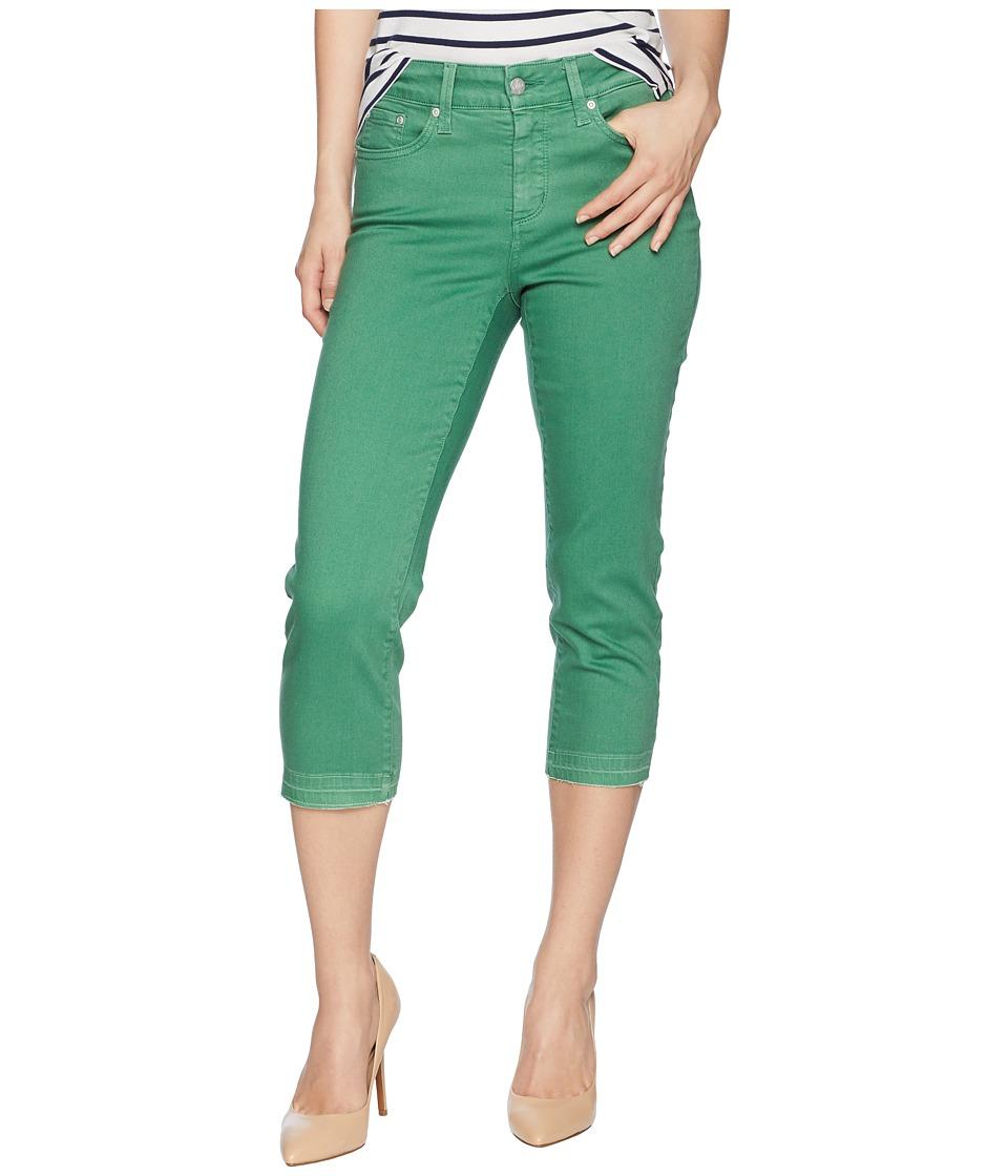 NYDJ Petite - Petite Capris in Cactus United States (Cactus United States) Womens Jeans