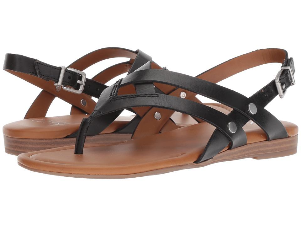 Franco Sarto Gretchen (Black) Women's Shoes