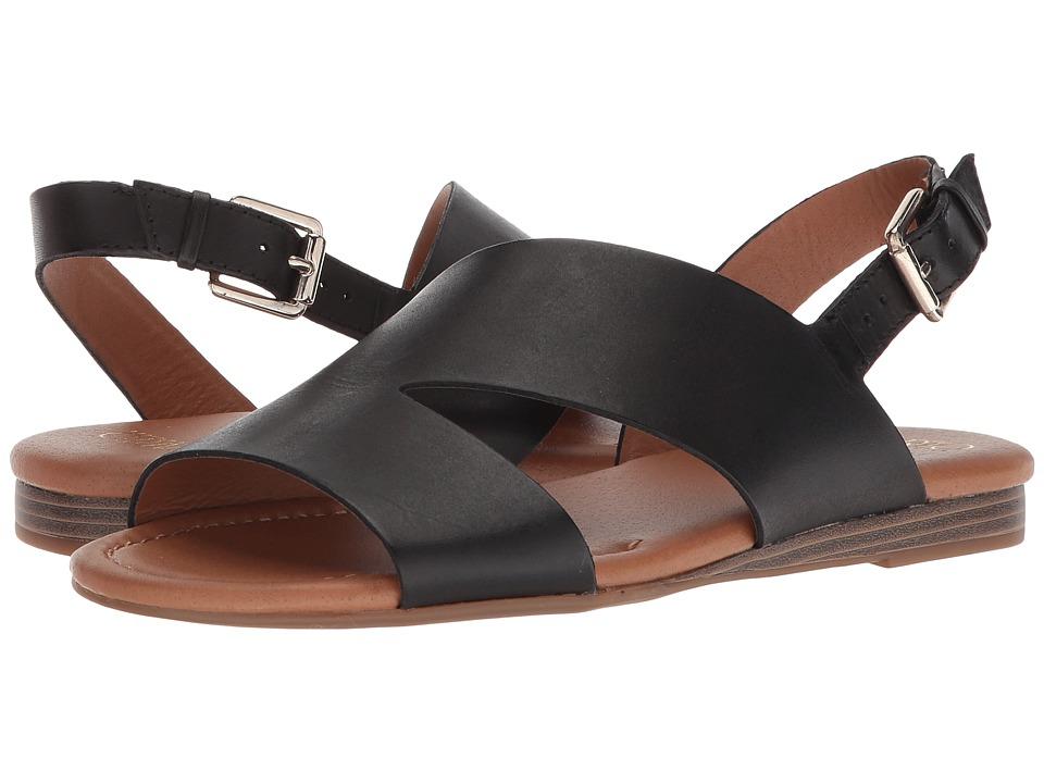 Franco Sarto Garza (Black) Women's Shoes