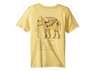 PEEK PEEK Elephant Tee (Toddler/Little Kids/Big Kids)