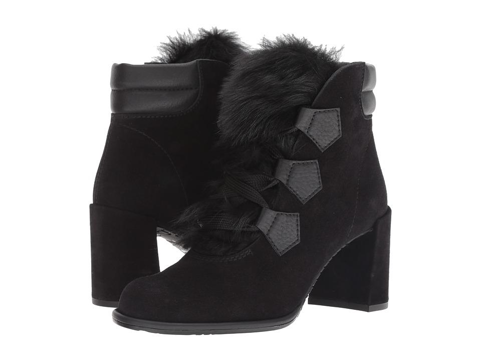 Pedro Garcia Wilmette (Black Castoro) Women's Shoes