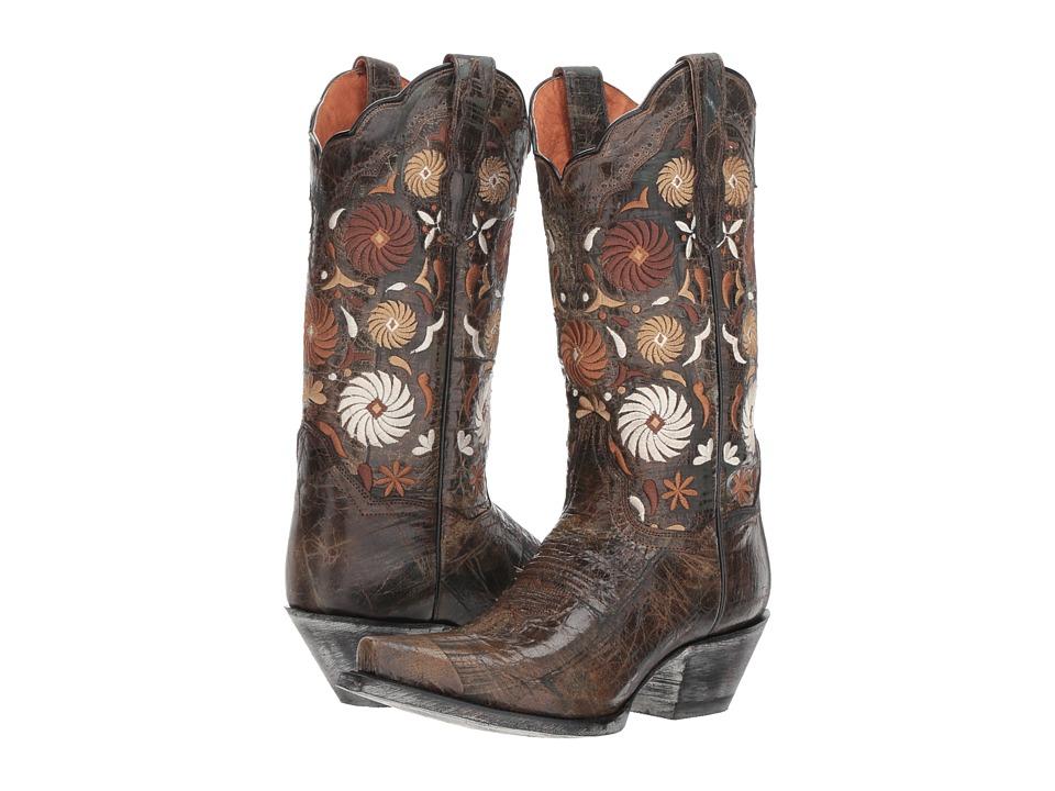 Dan Post Cheree (Chocolate) Women's Cowboy Boots