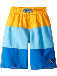 77b49d1421 Speedo Kids Blocked Volley Shorts (Little Kids/Big Kids) at Zappos.com