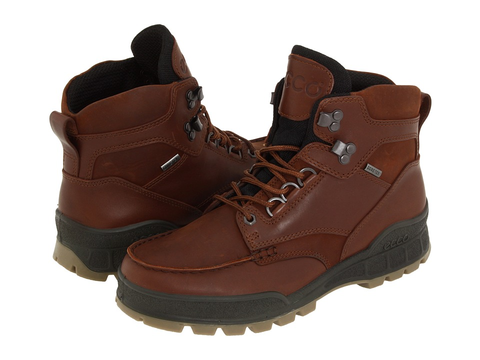 ECCO - Track II GTX High (Bison Leather/Bison Oiled Nubuck) Mens Waterproof Boots