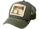 Animal Farm Donkey