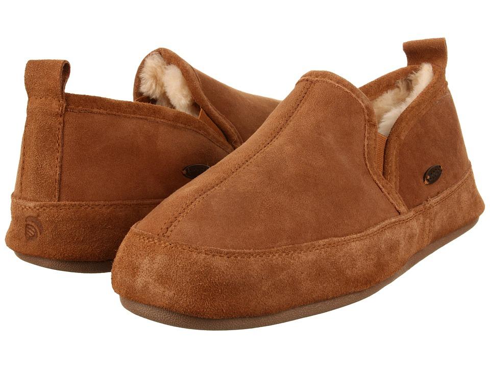 Acorn - Romeo II (Walnut Brown Sheepskin) Mens Slippers