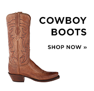 Man Shoes Fashion 2009 Tony sp western cowboyboots
