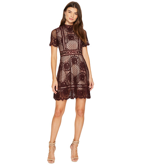 Aria Short Sleeve Lace Dress